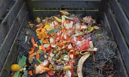 De beste compostbak voor je keukenafval