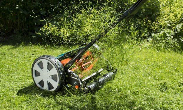 Grasmaaier kopen? De juiste grasmaaier voor je gazon