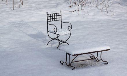 Het winterklaar maken van de tuin